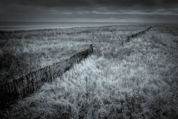 Photograph - Sea Rim Fence by David Heilman