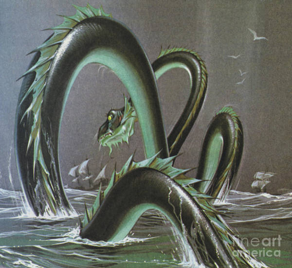 Wall Art - Painting - Sea Serpents by Angus McBride