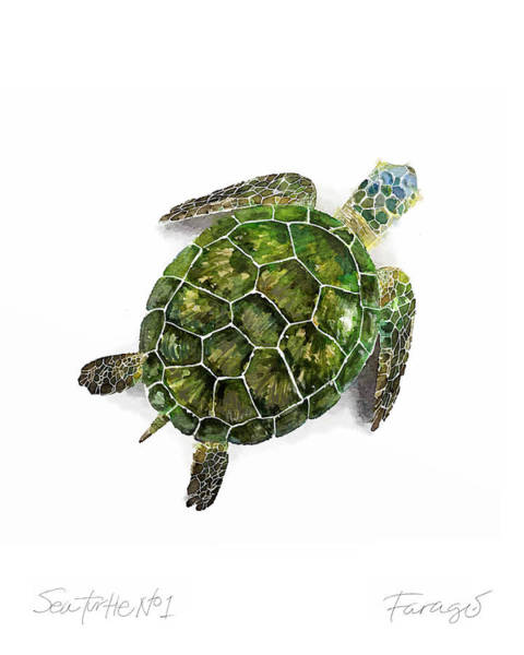 Endangered Wall Art - Painting - Sea Turtle #1 by Peter Farago