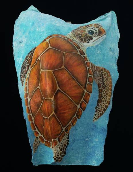 Painting - Sea Turtle New by Nancy Lauby