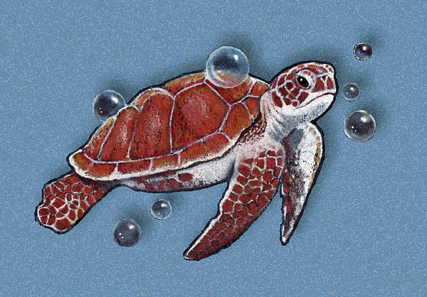 Wall Art - Drawing - Sea Turtle Swimming With Bubbles by Joyce Geleynse