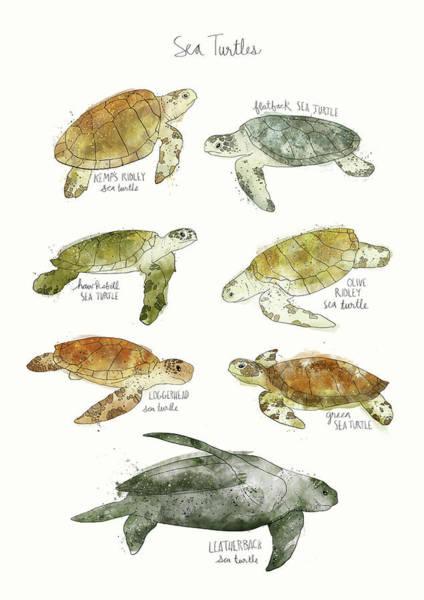 Wall Art - Mixed Media - Sea Turtles by Amy Hamilton