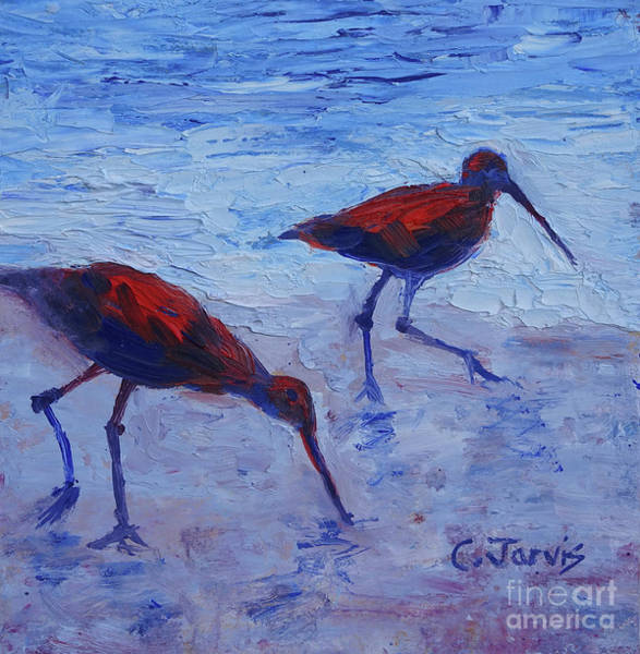 Painting - Seabird Stroll by Carolyn Jarvis