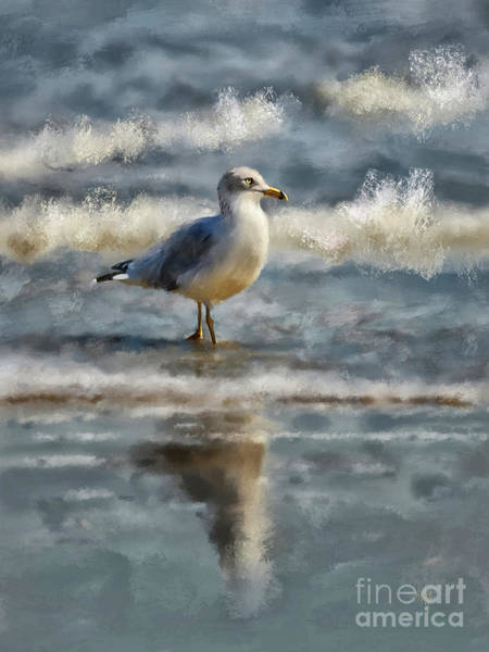 Digital Art - Seagull By The Seashore by Lois Bryan