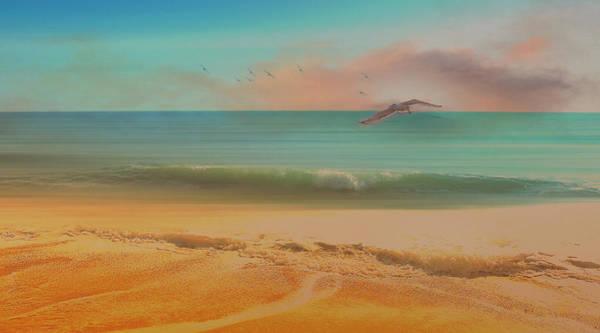 Seagulls Gather At Dusk Art Print