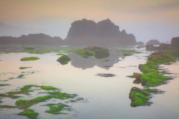 Photograph -  Seal Rock by Emmanuel Panagiotakis
