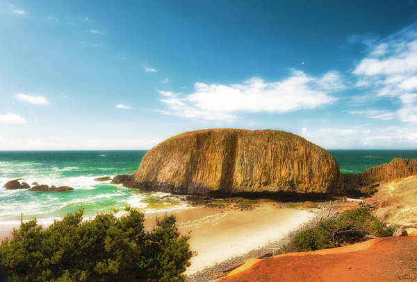Photograph - Seal Rock On Oregon Coast by Dee Browning