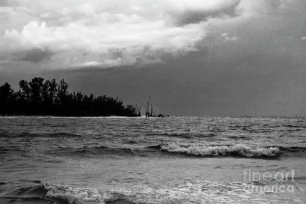 Saint Augustine Beach Wall Art - Photograph - Seascape, Dark Monochrome by Felix Lai