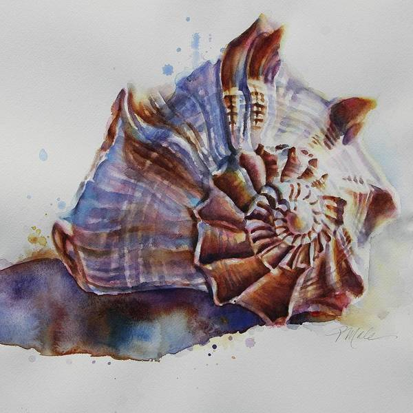 Painting - Seashell Swirl by Tracy Male