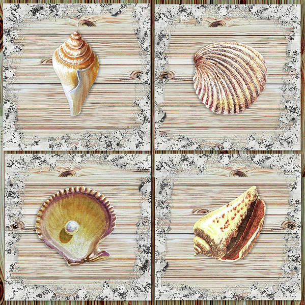 Painting - Seashells Beach House Rustic Chic Collection II by Irina Sztukowski