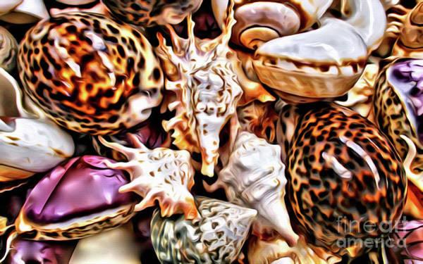 Wall Art - Photograph - Seashells by Jerome Stumphauzer