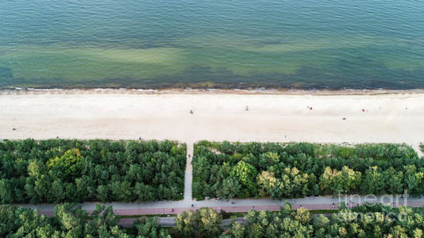 Wall Art - Photograph - Seashore And Green Trees From Top View. by Michal Bednarek