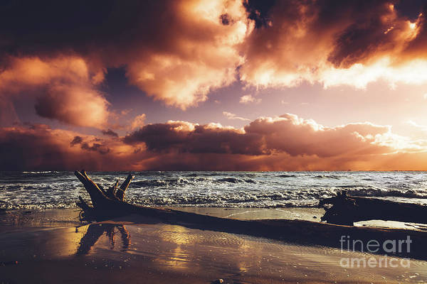 Wall Art - Photograph - Seashore In The Sunset After Storm. by Michal Bednarek