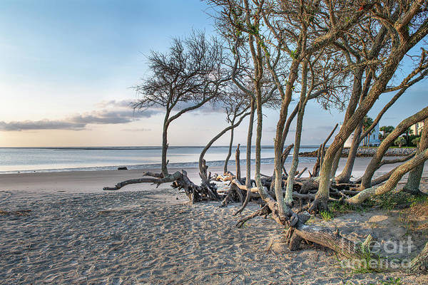 Photograph - Seaside Beach Hangout by Dale Powell