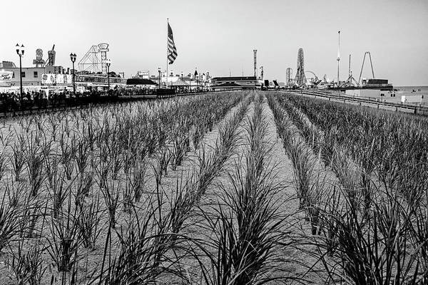 Photograph - Seaside Boardwalk Sand Dunes Bw by Susan Candelario