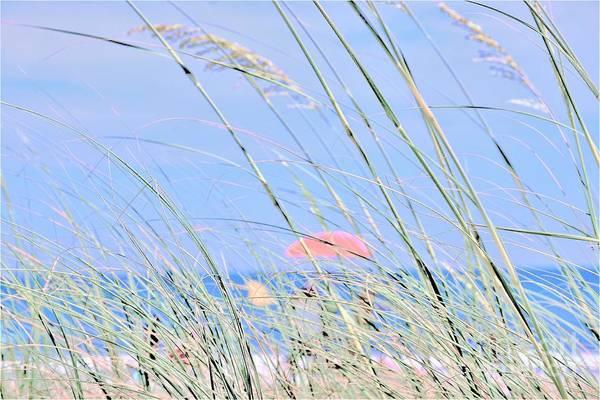 Photograph - Seaside by Merle Grenz