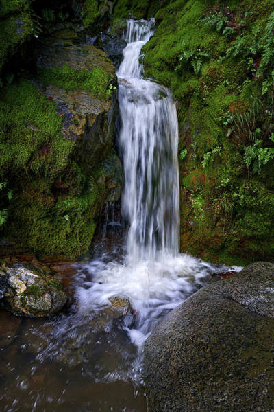 Photograph - Seasonal Waterfall by Janet Kopper