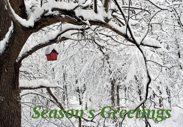 Photograph - Season's Greetings by R  Allen Swezey