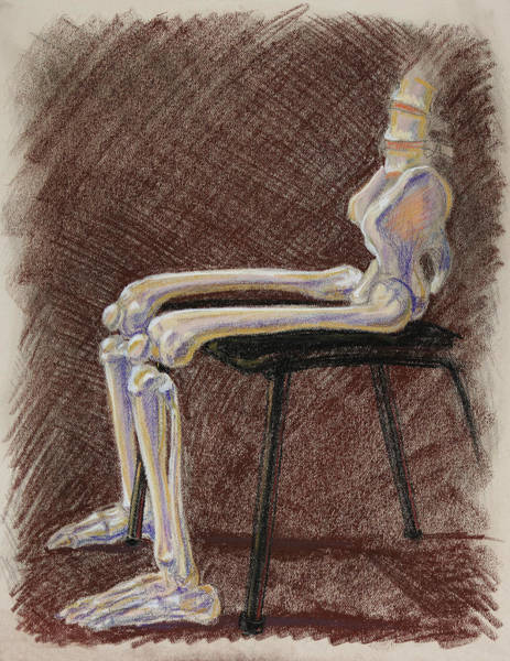 Wall Art - Drawing - Seated Skeleton Legs And Hips In Pastel  by Irina Sztukowski