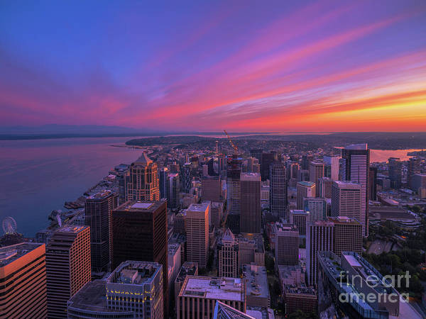 Wall Art - Photograph - Seattle Cityscape Sunrise From Above by Mike Reid