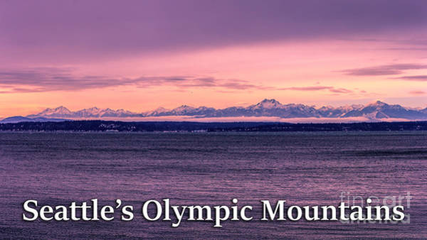Photograph - Seattle's Olympic Mountains by G Matthew Laughton