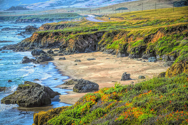 Wall Art - Photograph - Secluded Beach Big Sur by Barbara Snyder