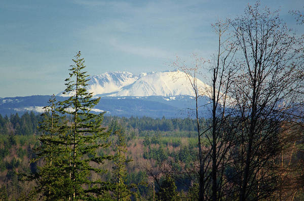 Photograph - Secluded St. Helens View by Tikvah's Hope