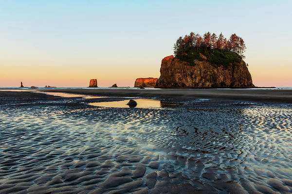 Digital Art - Second Beach, Olympic National Park by Michael Lee