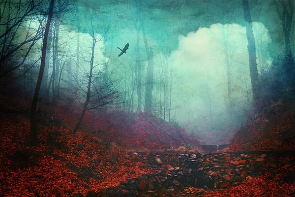 Photograph - Secret Dreamland by Dirk Wuestenhagen
