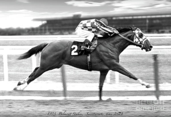 Wall Art - Mixed Media - Secretariat, Belmont Stakes, Back Stretch by Thomas Pollart