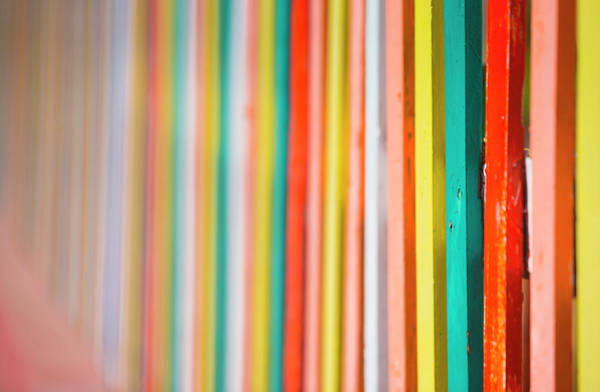 Baja California Peninsula Wall Art - Photograph - See Of Cortez Colorful Fence by Janet Muir