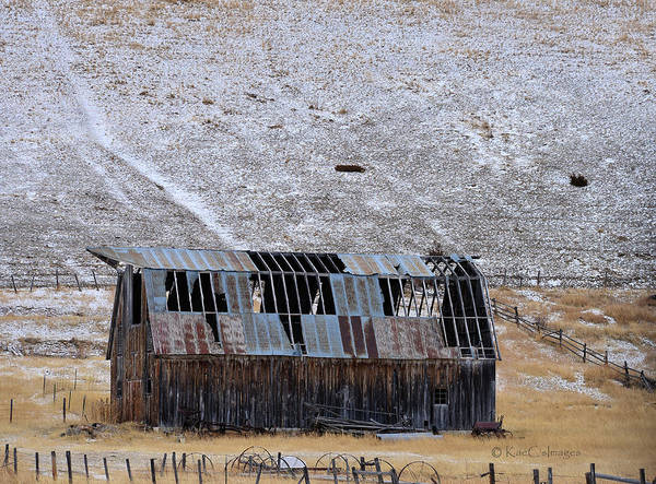 Wall Art - Photograph - See Through Dilapidated Barn by Kae Cheatham