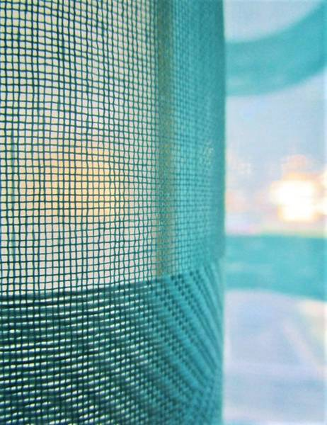 Photograph - See Through by Rosita Larsson