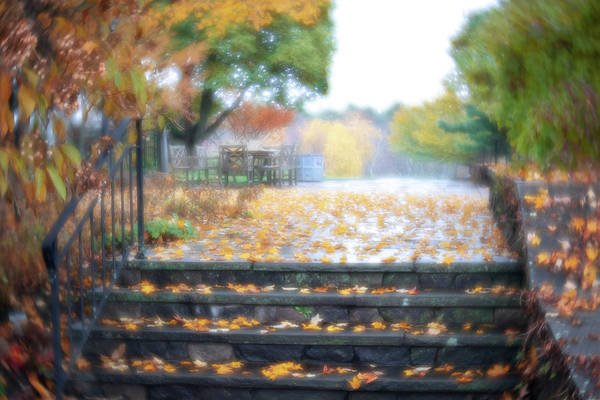 Photograph - See Ya Next Fall by Brian Hale