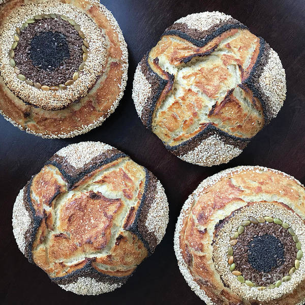 Photograph - Seeded X And O Sourdough 1 by Amy E Fraser