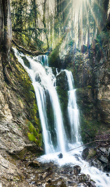 Wall Art - Photograph - Seerenbach Falls by DiFigiano Photography