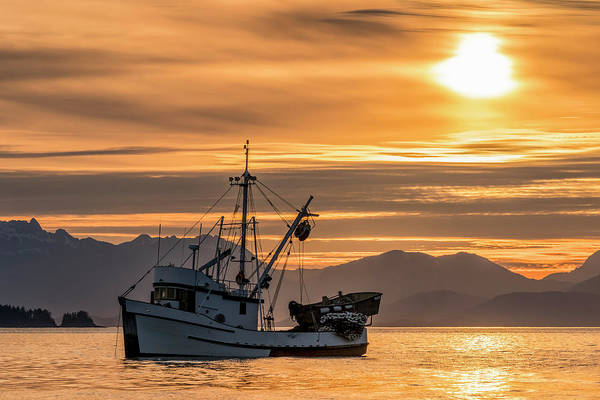 Wall Art - Photograph - Seiner Anchored In Amalga Harbor by John Hyde