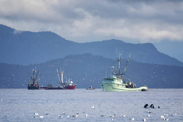 Photograph - Seiners Off Columbia Beach by Randy Hall