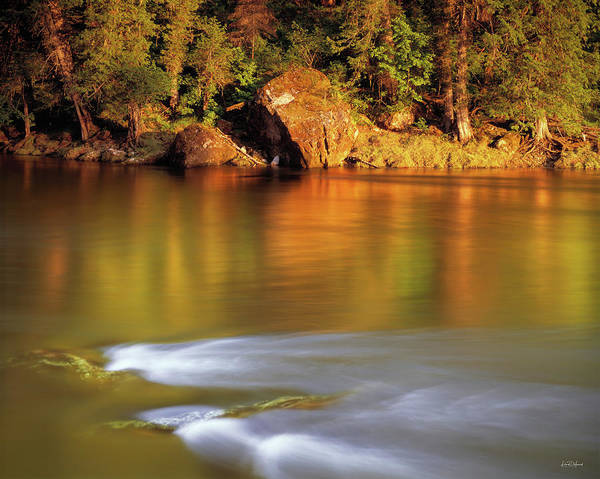 Photograph - Selway River by Leland D Howard