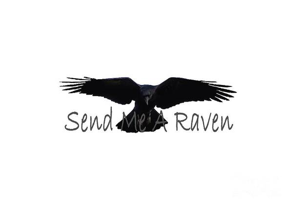 Mixed Media - Send A Raven by Ed Taylor