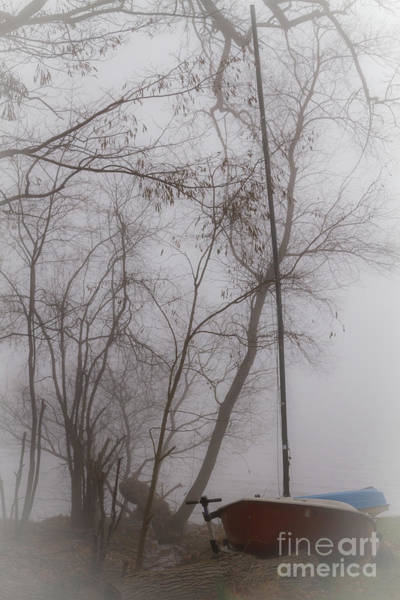 Wall Art - Photograph - Seneca Lake Fog by William Norton