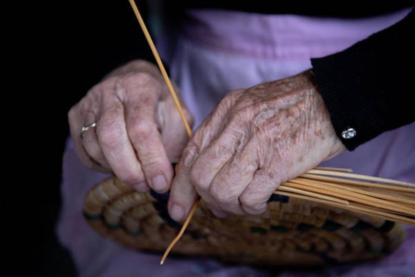 Wall Art - Photograph - Senior Woman Knitting A Traditional Basket With Reeds   by Michalakis Ppalis