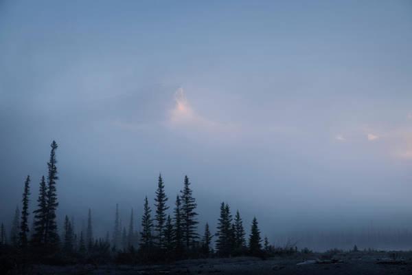 Photograph - Sentinels by Dan Jurak