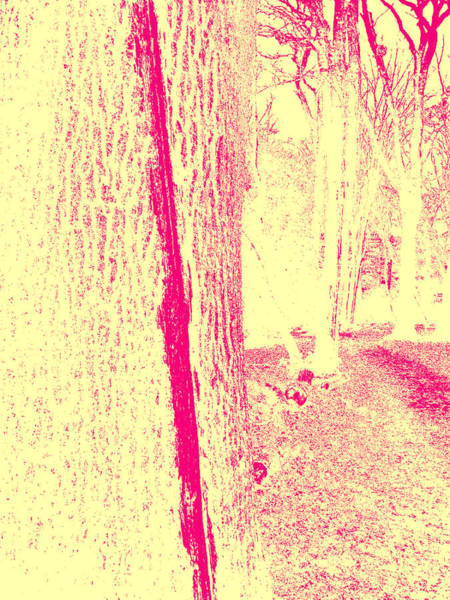 Photograph - Sepia Forest Trees In Highgate Woods 55 by Artist Dot