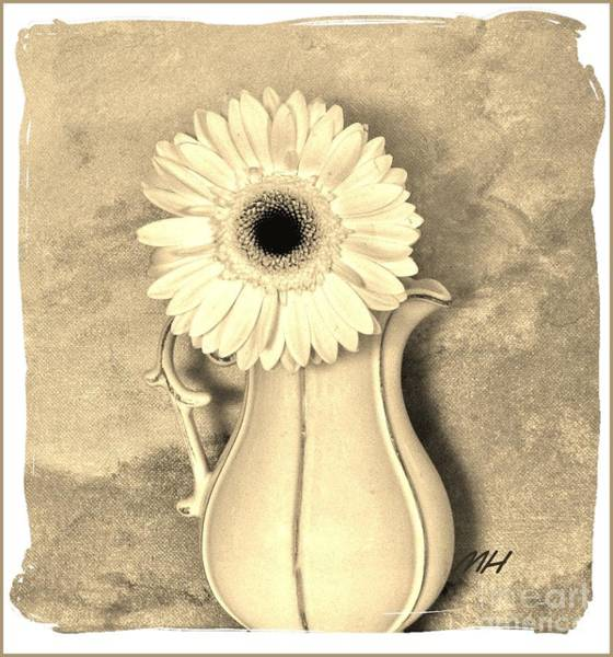 Wall Art - Photograph - Sepia Happy Daisy by Marsha Heiken