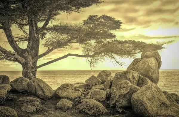 Digital Art - Sepia Seaview Monterey Peninsula  by Barbara Snyder