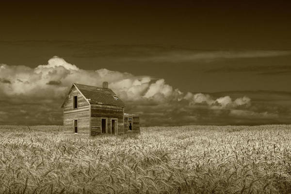 Photograph - Sepia Tone Of An Old Abandoned Prairie Farm House In A Wheat Fie by Randall Nyhof