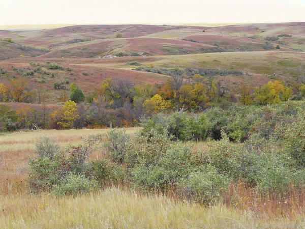 Photograph - September Prairie Jamboree by Cris Fulton