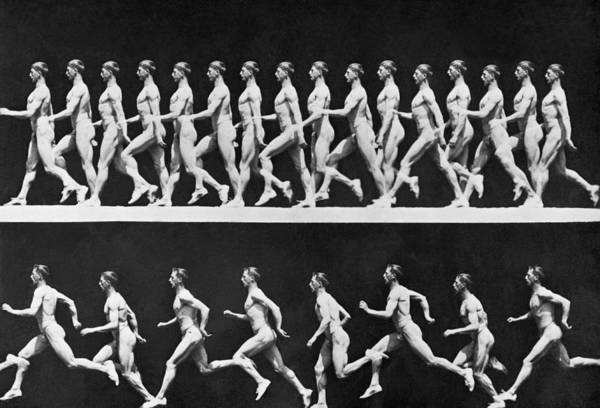 Photograph - Sequential Frames Of Nude Man Walking by Bettmann