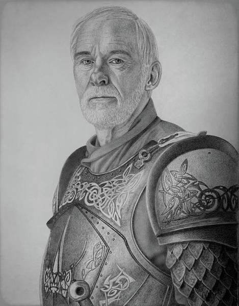 Drawing - Ser Barristan Selmy by Vanessa Cole